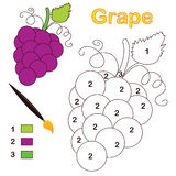 Color by number: grape. Color by number game with grape fruit. Eps file available Royalty Free Stock Images