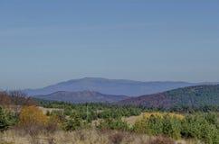 Color otoñal de la belleza en la montaña de Plana hacia la montaña de Rila Imagen de archivo libre de regalías