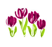 Color paint concept modern tulip flower sketch. Hand drawn spring floral illustration for print, card, decor, invitation stock photos