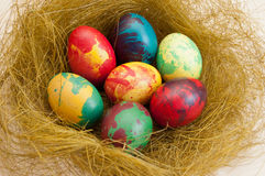 Color painted Easter eggs. In the nest Stock Images