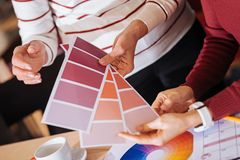 Amazing color palettes helping two designers in their work. Color palette. Creative enthusiastic designers choosing an appropriate color while holding three stock images