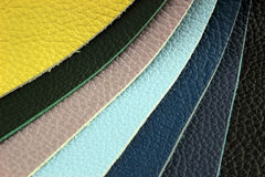 Color palette sample picker of leather material Royalty Free Stock Photos
