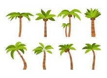 Color Palma Tree Icon Set de la historieta Vector stock de ilustración