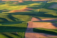 Color of the Palouse royalty free stock image