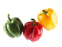 Color Paprika Stock Images
