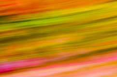 Color Pattern Stock Photography
