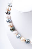 Color Pearl necklace Stock Photography