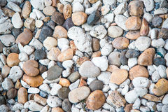 Color pebble stone in background. Royalty Free Stock Images