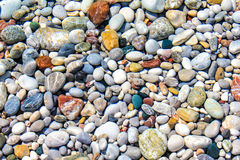 Color pebbles under sea water Stock Images