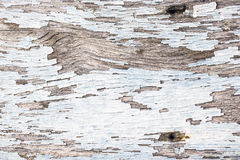 Color-Peel wood texture Stock Images