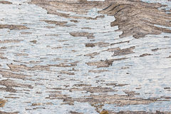 Color-Peel wood texture Royalty Free Stock Photography