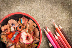 Color pencil and a cup of sharpener with shavings Royalty Free Stock Image