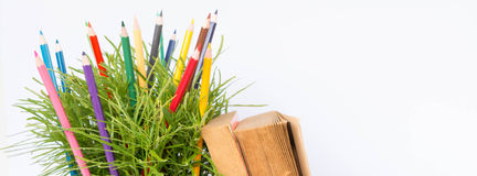 color pencil and green bush Stock Photography