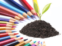 Color pencil and plant Royalty Free Stock Photos