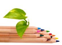 Color pencils concept. Royalty Free Stock Photo
