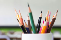 Color pencils in white container Royalty Free Stock Image