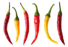 Color pepper Royalty Free Stock Photo