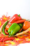Color peppers Royalty Free Stock Photo