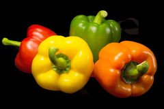 Color peppers on a black background. Stock Images