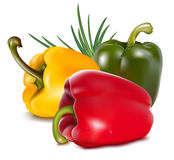 Color peppers with onion. Photo-realistic . Color peppers with onion Royalty Free Stock Image