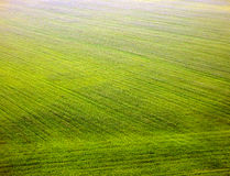 Color photography of fields from top view Royalty Free Stock Photo