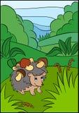 Color pictures: hedgehoges. Little cute hedgehog. Royalty Free Stock Image