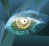 Color polygonal eye design Royalty Free Stock Image