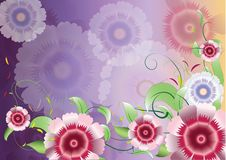 Color purple flowers background3 Royalty Free Stock Image