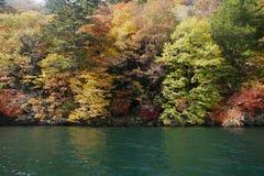 Color que cambia a lo largo del río Fotos de archivo libres de regalías