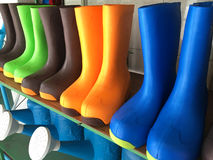 Color rain boots. Row on the shelf Stock Image