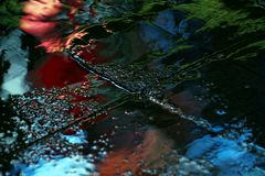 Color reflection in the asphalt after the rain in the evening Royalty Free Stock Images