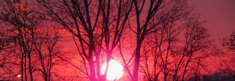 Color rojo Imagenes de archivo