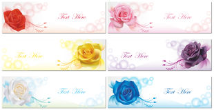 6 Color roses banner background collection set Stock Images