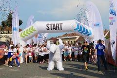 Color run start in Cluj-Napoca Royalty Free Stock Photos