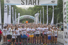Color Run Starting Line Royalty Free Stock Photos