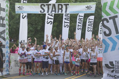 Color Run Starting Line Excitement Royalty Free Stock Photo