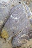 Color sandstone rocks in Jordan desert. Royalty Free Stock Images