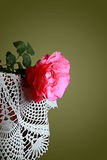 Color scarlatto della rosa Fotografie Stock Libere da Diritti