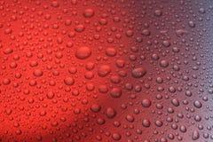 Color scarlatto di gocce Fotografia Stock Libera da Diritti