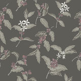 Color seamless pattern based on ink painted coffee branches. With beans and flowers. Great for cafe, bars, coffee ads, wallpaper, wrapping paper Royalty Free Stock Photos