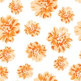 Color seamless pattern of peony flower. Stock Photos