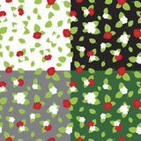 Color seamless pattern of strawberries and flowers. Set of four colored seamless patterns. Berries and flowers of strawberry. Vector format EPS10 Royalty Free Illustration