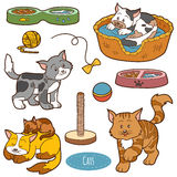 Color set of cute domestic animals and objects Royalty Free Stock Image