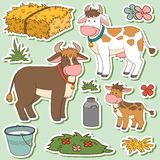Color set of cute farm animals and objects, vector family cow Stock Photos