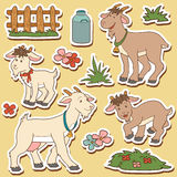Color set of cute farm animals and objects, vector family goat Royalty Free Stock Photos
