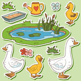 Color set of cute farm animals and objects, vector family goose. And objects royalty free illustration