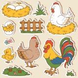 Color set of cute farm animals, vector family chicken. Color set of cute farm animals and objects, vector family chicken and objects vector illustration