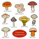 Color set of poisonous mushrooms. Set of poisonous mushrooms, color stickers with different fungi Royalty Free Stock Photos