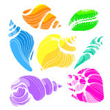 Color set with shapes of sea shells on white background. Vector Royalty Free Stock Photography