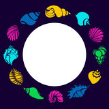 Color set of silhouettes of seashells in circle. Shell, conch, spiral, helix. Vector shape. Stock Photography